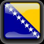 vertaler bosnisch
